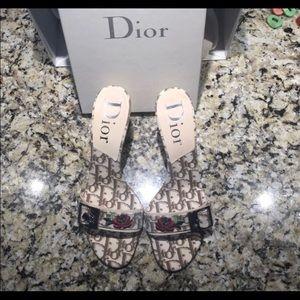Dior Trotter Tan heels